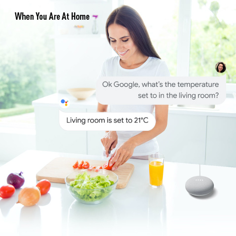A lady giving voice command to Google Nest Mini speaker cutting vegetable in the kitchen