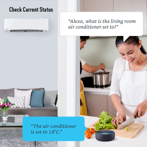 A lady asking Amazon Alexa to check the current lliving room AC set temperature while cutting vegetable in the kitchen