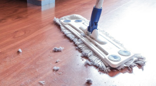 Mopping dust on the floor
