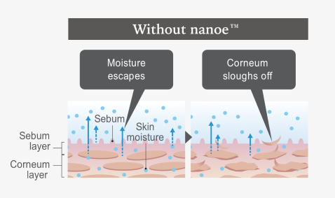 Moisture escapes and corneum sloughs off without nanoe™ diagram