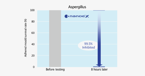 Effect of nanoe™ X on survival rate of adhered mould survival rate against time