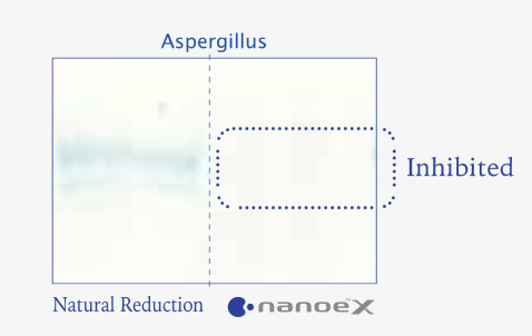 Effects of nanoe™ X on mould verified by disappearance of coloured section