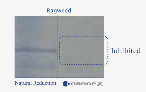 Effects of nanoe™ X on grass pollen verified by disappearance of coloured section