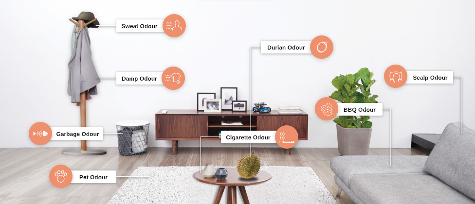 Various odours in living room