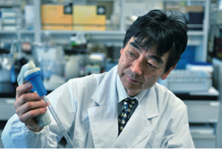 Professor Masahiro Sakaguchi working in research lab