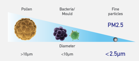 An illustration comparing the sizes of pollen, bacteria, mould, and PM2.5.